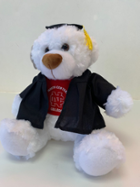 Image for the Grad Louie Plush Bear w/Cap&Gown product
