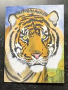 Image for the Tiger Greeting Cards Chesser Arts product