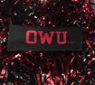 Image for the OWU Bishops Headband product