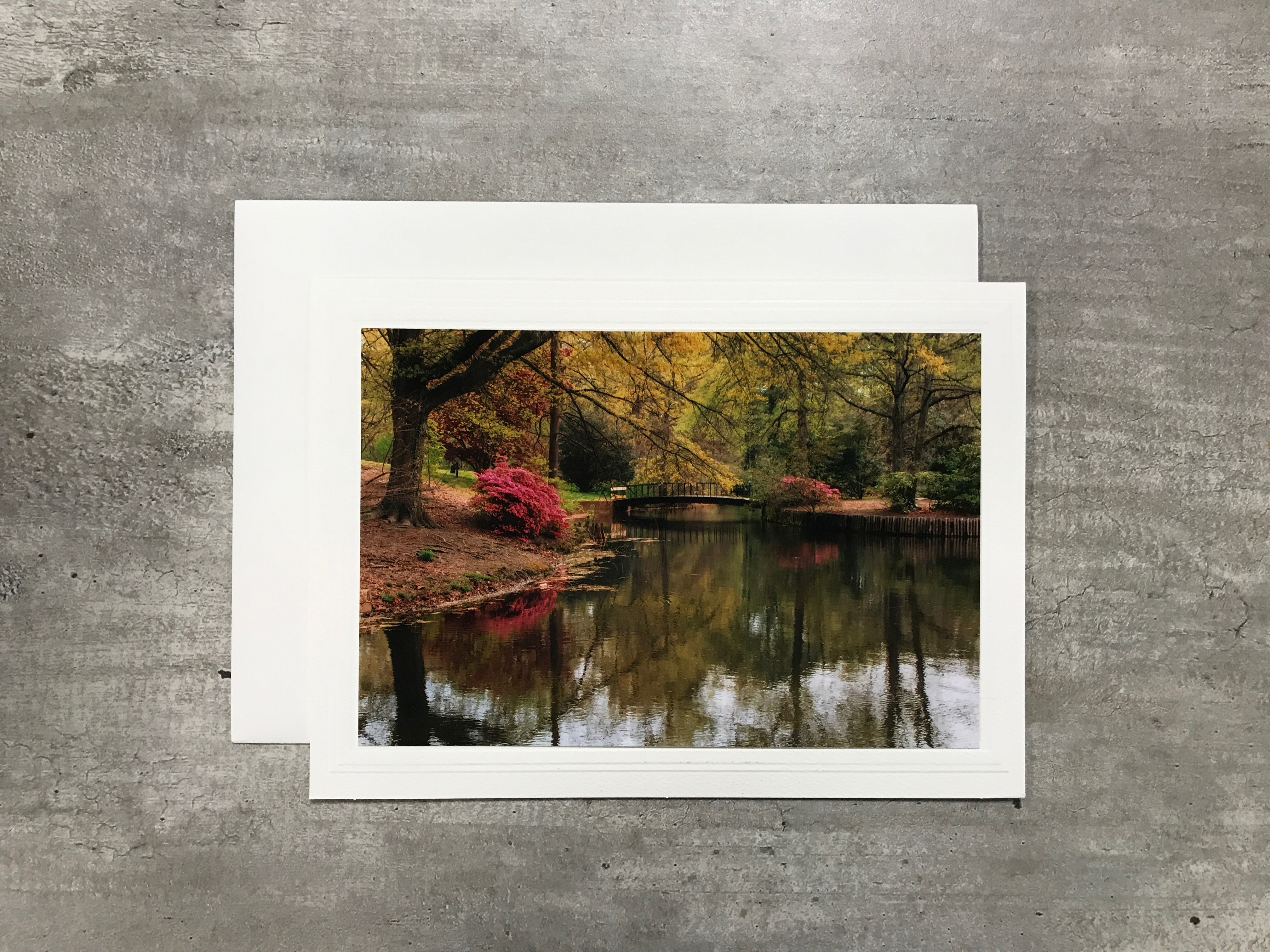 Alternative Image for the Meredith Photo Cards, Cindy McEnery Photography product