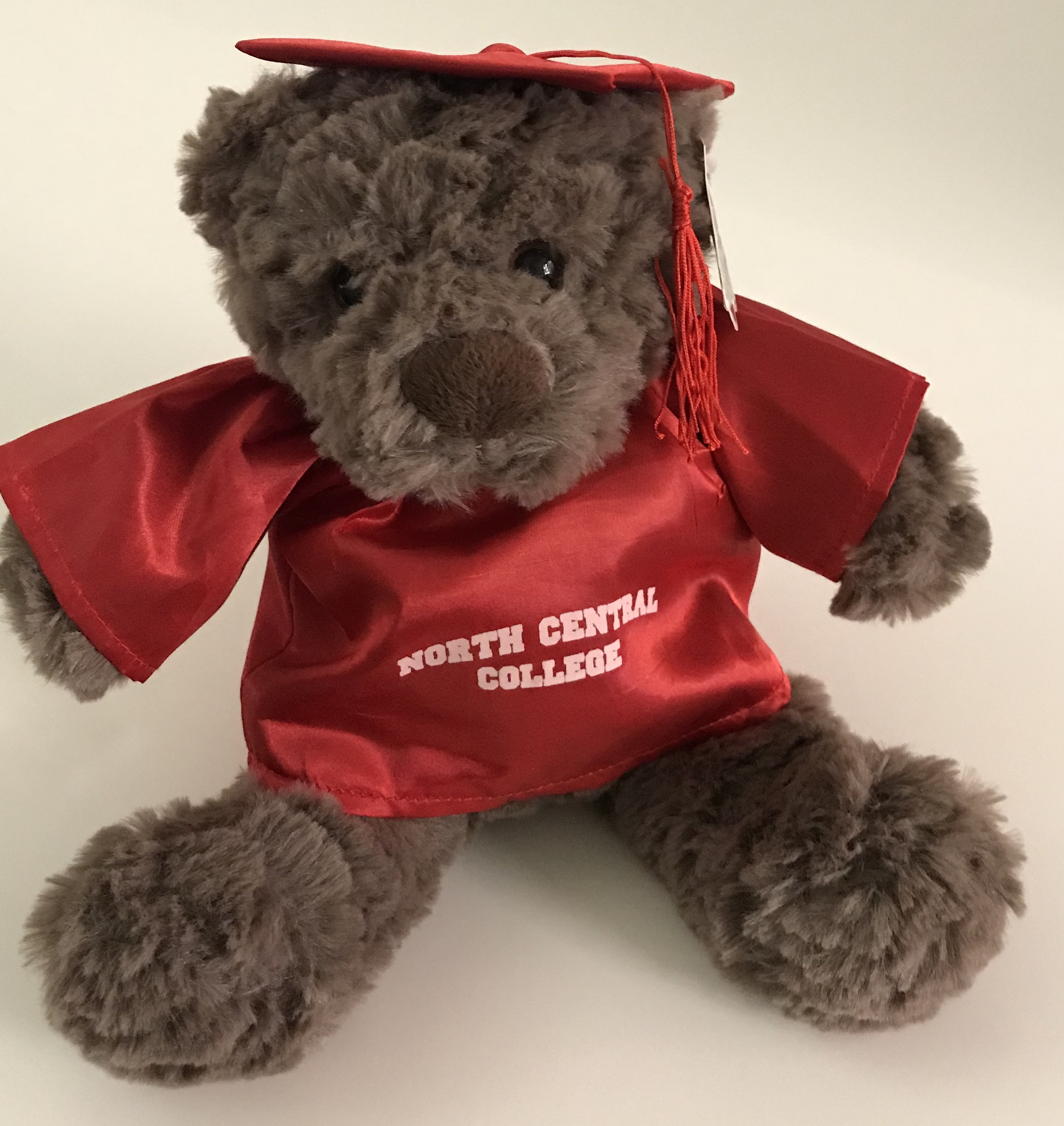 Image for the Plush Winston Graduation Bear w/Red Cap & Gown product