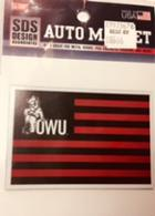 Image for the Small Ohio Wesleyan Flag Magnet product